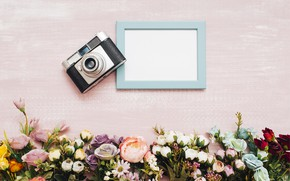 Picture flowers, background, frame, The camera