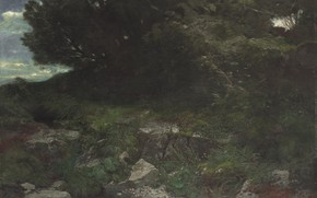 Picture 1901, The edge of the forest, Arnold .. ..