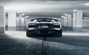 Picture lights, Lamborghini, supercar, rear view, 2018, Novitec Torado, Aventador S