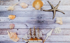 Picture background, Board, shell, boat, different