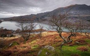 Wallpaper landscape, trees, Wales, clouds, Snowdonia, mountains, lake