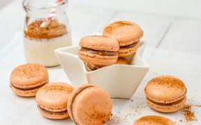 Picture chocolate, cookies, cream, dessert, macaroon