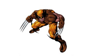 Wallpaper Wolverine, superhero, Wolverine
