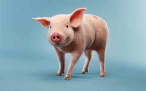 Wallpaper pig, children's, rendering, smile, pig, luis ramos, Pig