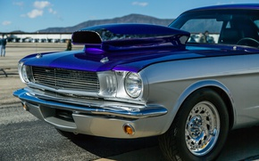 Picture Ford Mustang, the front, 1966