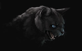 Picture darkness, mouth, fangs, black cat, art, evil eye, Brevisart