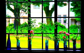 Picture flowers, frame, window, vase