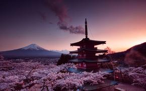 Picture Japan, Japan, Fuji, Senso-ji supplied with, pagoda of Senso-JI temple, the evening sky, the cherry …