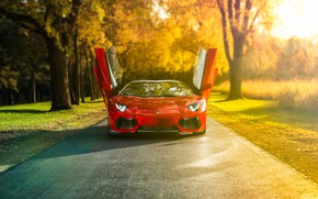 Wallpaper sunrise, red, Lamborghini, supercar, trees, car, road, natural light