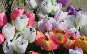 Picture tulips, artificial flowers, spring 2018, Meduzanol ©