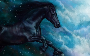 Wallpaper horse, horse, oil, tale, art, watercolor, pencil, painting, horse, gouache, wallpaper., painting painting, sky night, ...