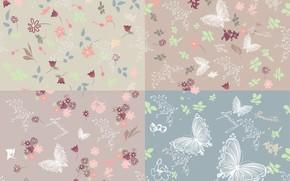 Wallpaper background, texture, butterfly, butterflies, background, vector, flowers, pattern