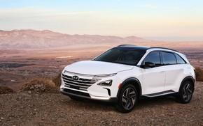 Picture Hyundai, 2018, crossover, CES, Nexo