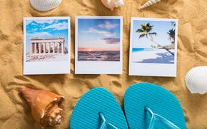 Picture vacation, stay, beach, seashells, beach, shell, sand, travel, sand, vacation, summer, starfish, slates, summer