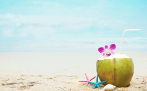 Picture sand, sea, beach, summer, stay, coconut, cocktail, shell, summer, beach, vacation, sea, sand, drink, coconut, …