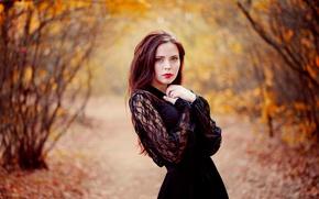 Picture autumn, makeup, dress, sponge, the beauty, Ann Nevreva
