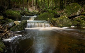 Picture forest, river, stones, waterfall, hdr, river in the forest