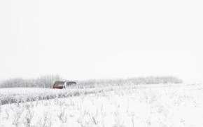 Picture winter, field, snow, house
