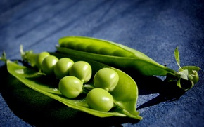 Picture shadow, peas, pod, green peas