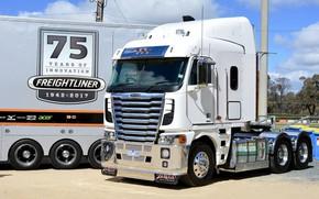 Wallpaper white, Argosy, tractor, Freightliner