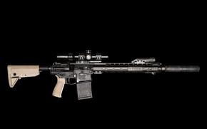 Picture weapons, muffler, assault rifle