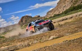 Picture Water, Sand, 2008, Sport, Speed, Race, Peugeot, Squirt, Lights, Red Bull, Rally, Dakar, Dakar, Rally, …