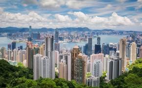 Picture the city, Hong Kong, China
