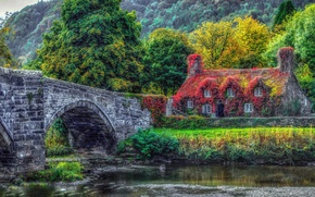 Picture trees, bridge, house, river, Wales, Century Cistercian monastery