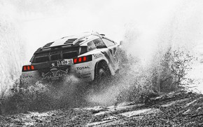 Picture Sport, Speed, Race, Dirt, Peugeot, Squirt, Lights, Red Bull, Rally, Dakar, Dakar, Rally, Sport, Black …