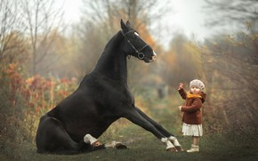 Picture horse, girl, baby, taming