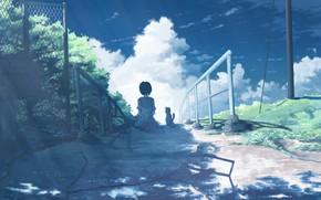 Picture cat, the sky, girl, nature, ladder, sitting, Alaka, K.Hati