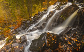 Wallpaper waterfall, Maaninka, Finland, leaves, Northern Savonia, North Savo, Maaninka, forest, Finland, High touch, autumn, stones, ...