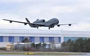 Picture military, Germany, flag, aviation, Euro Hawk, drone, vant, Northrop Grumman RQ-4 Global Hawk, sub-version of …