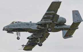 Picture the sky, weapons, flight, A-10C Thunderbolt II