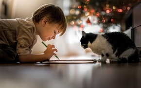 Picture lights, cat, mood, animal, friendship, floor, pencil, children, feeling, drawing, little boy, Child, on the …