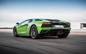 Picture green, Lamborghini, rear view, 2017, Aventador S