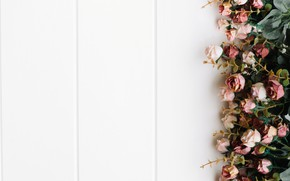 Picture flowers, roses, wood, decor, roses
