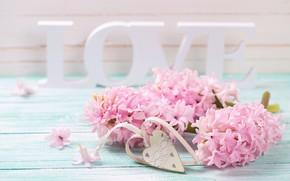 Picture love, flowers, letters, love, vintage, heart, flowers, romantic, violet