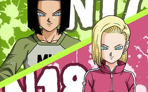Picture game, android, alien, anime, martial artist, manga, Dragon Ball, strong, Dragon Ball Super, japonese, Android …