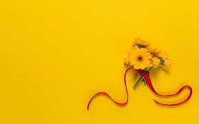 Wallpaper bouquet, gerbera, tape, background, flowers