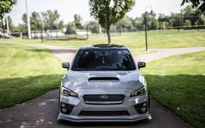 Picture Subaru, Impreza, Gray, Graphite
