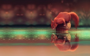 Wallpaper squirrel, Cyril Rolando, art, acorn, What do you wanna ?, children's, stream, walnut