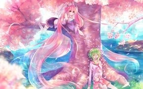 Picture girl, hair, anime, Vocaloid