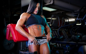 Picture brunette, pose, fitness, gym, abs