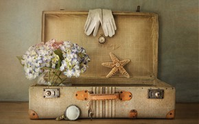 Picture texture, gloves, suitcase, starfish, hydrangea
