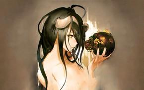 Wallpaper anime girl, anime, sake, artwork, Overlord, girl, Albedo, brunette, horns