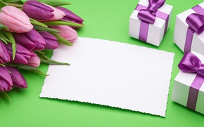 Wallpaper fresh, pink, love, bow, romantic, pink, tulips, tulips, gift, purple, bouquet, gifts, flowers