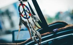 Picture talisman, amulet, Dreamcatcher