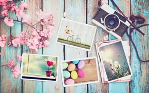Picture flowers, photo, eggs, spring, camera, colorful, Easter, wood, pink, flowers, camera, spring, Easter, eggs, decoration, …