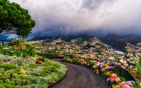 Picture clouds, flowers, mountains, tree, home, panorama, Portugal, the parapet, beds, Funchal, Madeira Islands